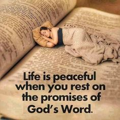 You are blessed, God words are sound and solid, they protect and cover his children who abide in Him. LJF Thank you Biblical Quotes, Prayer Quotes, Religious Quotes, Bible Verses Quotes, Bible Scriptures, Spiritual Quotes, Faith Quotes, Scripture Images, Devotional Quotes