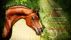 The essential joy of being with horses is that it brings us in contact with the rare elements of grace, beauty, spirit, and fire. ~Sharon Ralls Lemon  Art by PixelGraphix, facebook.com/PixelGraphixDesign