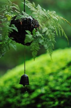Japanese Wind Chime, Furin. I need a closer look but I think I have the exact same chime, bought in Paris.
