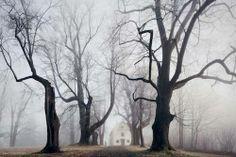 I racconti dei fratelli Grimm nelle foto di Kilian Schoenberger
