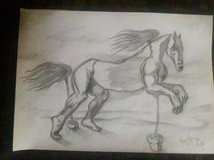 Ten hoeve - Boceto caballo 2016