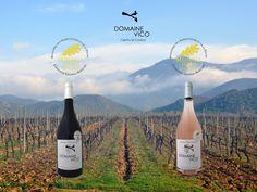 Deux #médailles pour le domaine Vico au #SIA2016  http://www.corsematin.com/article/article/vins-de-corse-palmares-du-concours-general-agricole-2016.1969627.html