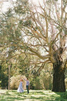 Adelaide Hills Engagement Photographer | Lucinda May Photography