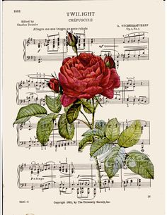 BOGO SALE French Red rose Dictionary art print wall por bmarinacci