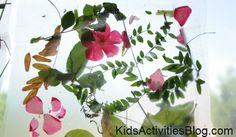 Nature Craft: Collage