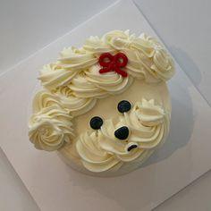 """구미케이크 에치크🎂 on Instagram: """"🐶🐶🐶  ⠀ ⠀ ⠀ ♡̷̷̷ 창업반, 케이크 예약 문의 카카오채널 : 에치크 (쪽지, 댓글✖️) ⠀ ⠀ ⠀ 원하는 날짜와 케이크 사진 함께 문의하시면…"""" Cute Desserts, Cake, Food, Kuchen, Essen, Meals, Torte, Cookies, Yemek"""
