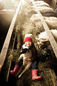 la gardienne des moutons.