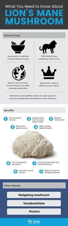 Lion's mane mushroom - Dr. Axe http://www.draxe.com #health #natural #holistic