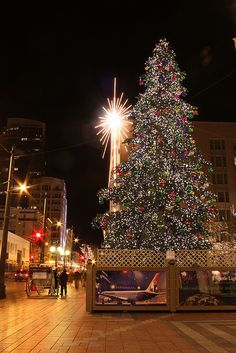 Westlake Center Christmas Tree | Seattle Merry Christmas, Christmas Trees, West Lake, Christmas Traditions, Seattle, Invitations, Winter Solstice, Yule, Holiday Decor