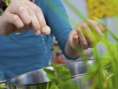 Sal de ervas é boa opção para reduzir sódio na comida - Escolha Saudável - iG