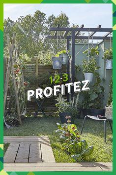 Jacuzzi, Balcony Garden, Patio, Plants, Outdoor, Garden, Chicken Coop Garden, Rock Shower, Vertical Vegetable Gardens