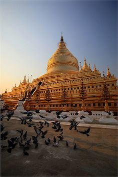 Myanmar Tourism and Travel - Plan your Myanmar holidays, trips or vacations and get tourist info. Threeland Travel Gray Line, experiences in tourism industry, offers packages in Indochina with Laos, Vietnam and Cambodia also Places Around The World, The Places Youll Go, Travel Around The World, Oh The Places You'll Go, Places To Visit, Around The Worlds, Myanmar Travel, Asia Travel, Burma Myanmar