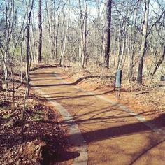 【m.ubakuy】さんのInstagramをピンしています。 《道。  #森#道#小道#軽井沢#星野リゾート#forest #自然#nature#散歩#ウォーキング#プチ旅行 #instalike #instamood#instapic#instalife#insta#instagram #instamummy#instamama#instagood#mamalife #ママライフ#momlife #mom#mountain#japan#resort#way#風景#pastel》