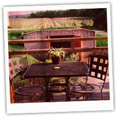 Creekside Winery on the deck Outdoor Furniture Sets, Outdoor Decor, Wine Country, Wines, Deck, Wedding Ideas, Home Decor, Decoration Home, Room Decor