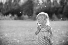 dandelion wishes, Mischief and Laughs photography, Cincinnati #365 #photography