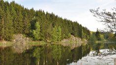 Borgedalssø er en kunstigt opstemmet sø, der ligger i sprækkedalen Søndre Borgedal. Søen blev opstemmet, efter en voldsom storm i oktober 1967, hvor træerne i store dele af plantagen væltede. For at redde så meget træ som muligt fra råd og insektangreb, opstemmede man vandløbet der løb gennem sprækkedalen, og lavede dermed et reservoir til opbevaring af træet.
