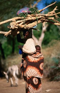 Africa | Carrying firewood and knitting.  Near Agadez, Niger | ©Frans Lemmens / Lonely Planet Images