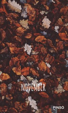 iPhone and Android Wallpapers: Autumn Leaves Wallpaper for i Iphone Wallpaper Herbst, Fall Wallpaper Tumblr, Wallpaper Free, Cute Fall Wallpaper, Holiday Wallpaper, Iphone Background Wallpaper, Aesthetic Iphone Wallpaper, Halloween Wallpaper, Iphone Backgrounds