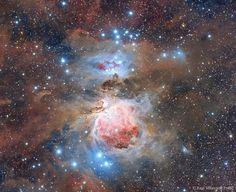 Toda la región de Orion, situada a unos 1.600 años luz de distancia, está inundada de intrincados y vistosos filamentos de polvo. Opaca a la luz visible, el polvo se crea en la atmósfera exterior de estrellas frías y masivas y es expulsada por un intenso viento de partículas.