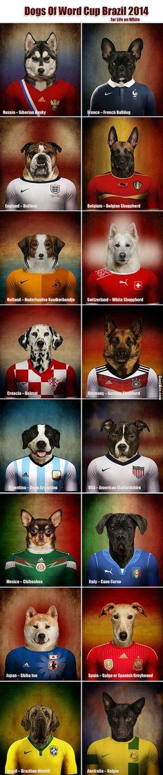 Los perritos tambien jugaran el mundial....