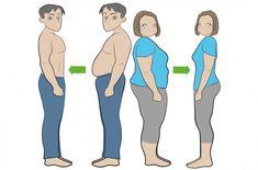 Con la dieta libera si bruciano i grassi in eccesso, si attiva il metabolismo e...