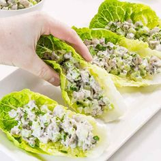 Our Low Carb Chicken Salad Wraps are an easy lunch that you can make ahead, just keep the lettuce leaves separate and top them with the chicken! Chicken Salad Lettuce Wrap Recipe, Low Carb Chicken Salad, Salad Recipes Low Carb, Lettuce Wrap Recipes, Chicken Salad Recipes, Healthy Chicken, Vegetarian Recipes, Healthy Recipes, Keto Recipes