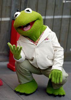 Kermit the Frog at the Disney MGM Studios Jim Henson, Sapo Kermit, Funny Kermit Memes, Sapo Meme, The Muppet Show, Miss Piggy, Kermit The Frog, Dinosaur Stuffed Animal, Funny Pictures