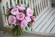 "david austin ""rosalind"" & phoebe"" roses -- they look so much like peonies!"