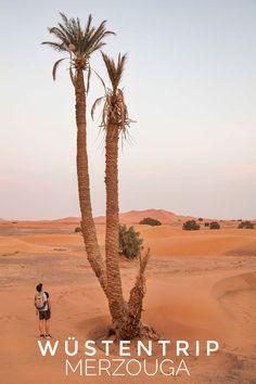 In diesem Blog Artikel erzählen wir über unsere Erfahrungen vom Kameltrekking in Marokko.  Zudem teilen wir mit euch die gesammelten Eindrücke einer unvergesslichen Wüstentour mit Übernachtung im Wüsten Camp. Außerdem zeigen wir euch, wie man am besten von Marrakesch nach Merzouga kommt und geben euch nützliche Tipps über Unterkünfte, Wüstenübernachtung und Tourenanbieter.