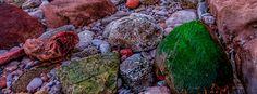 South Devon, Photography, Free, Photograph, Fotografie, Photoshoot, Fotografia
