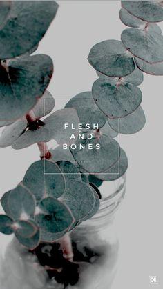 Flesh and Bones Lyrics by The Sweeplings - KAESPO