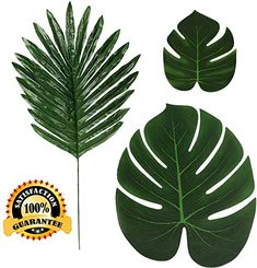 Amazon.com : adult balloon garland Tropical Decor, Tropical Plants, Coastal Decor, Surprise Party Decorations, Artificial Palm Leaves, Beach Bedroom Decor, Hawaiian Luau Party, Party Suppliers, Birthday Table