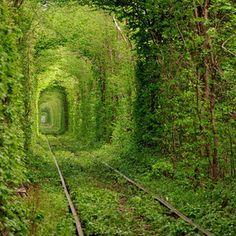 O mundo em que vivemos está cheio de lugares maravilhosos que muitos de nós nem sabemos que realmente existem. Conheça agora alguns desses lugares deslumbrantes: