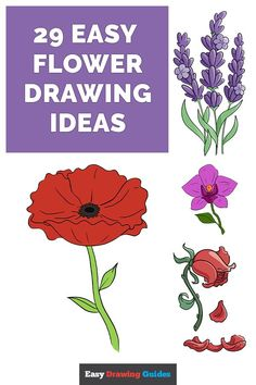 Easy Flower Drawings, Flower Drawing Tutorials, Easy Drawings, Drawing Ideas, Flowering Cherry Tree, Dancing Daisy, Learn To Sketch, Early Spring Flowers, Cherry Blossom Japan