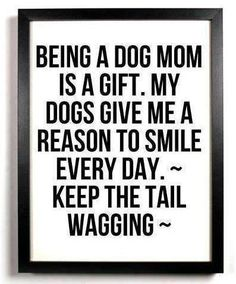 Loyal dog mother's, the greatest gift is having a dog and knowing that he will always be there and give 100% love back no matter what!!!
