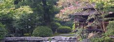 This site is about Japanese/ Zen gardens with info about the historic gardens of Kyoto (and pictures!).  It's VERY cool!!