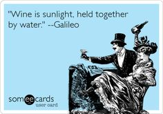 Funny Weekend Ecard: 'Wine is sunlight, held together by water.' --Galileo.
