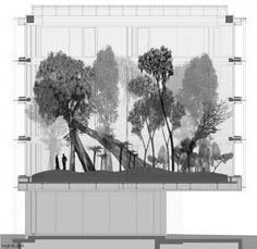 Forum 3, Novartis Campus | Vogt Landschaftsarchitekten