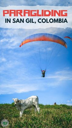 Looking for a adventurous activity in Colombia? Check our paragliding experience in San Gil, Colombia's adventure capital.