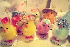 My Easter chicks are ready to party!  They are sporting mini Easter bonnets, party hats and felt bunny ears!