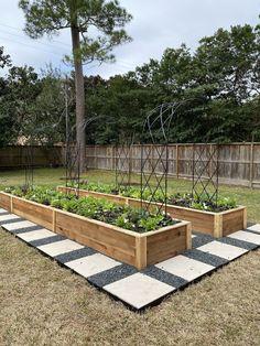 Garden Bed Layout, Raised Bed Garden Design, Cedar Raised Garden Beds, Backyard Garden Design, Backyard Landscaping, Raised Gardens, Raised Planter, Raised Beds, Veg Garden