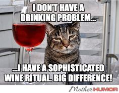 16 ideas for party time quotes funny smile Wine Jokes, Wine Meme, Wine Funnies, Funny Wine, Lol So True, Happy Wine, Cat Wine, Alcohol Humor, Funny Alcohol