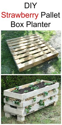 How To Make A Strawberry Pallet Box Planter DIY