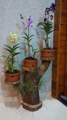nice 43 Popular Air Plant Display Ideas For Home Garden Crafts, Garden Projects, Garden Art, Garden Design, Easy Projects, Garden Ideas, Diy Flowers, Flower Vases, Flower Pots