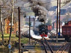 Preßnitztalbahn Abandoned Train, Train Engines, Bahn, Train Station, Locomotive, Switzerland, Berlin, Retro, Amazing
