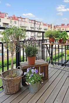Balkong, balkongliv, växter, odling, lerkruka