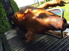 Spit-roasted pig at birthday party  Varken aan het spit