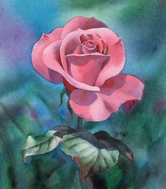 flower art | Watercolour Painting Demonstration – Perfectly Pink Rose
