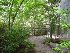 Like the pretty little trees and pavers in free form. Bog Garden, Japan Garden, Forest Garden, Green Garden, Landscape Plans, Landscape Architecture, Backyard Renovations, Side Yards, Farm Gardens