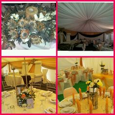 For your function, tommy's decor 0769152294